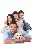 picture of puppies mother dog  - Portrait of happy family lying on top of each other with dog over white background - JPG