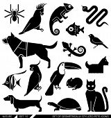 foto of lizards  - Set of various pet icons - JPG