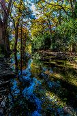 picture of crystal clear  - Bright Beautiful Fall Foliage On The Emerald Colored Crystal Clear Frio River in Texas - JPG