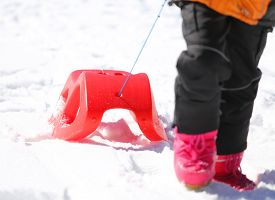 stock photo of rebs  - reb sled for playing in the snow in mountains in winter - JPG