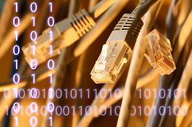stock photo of wiretap  - Insulated cords of network link in closeup - JPG