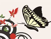 Floral vector background with a swallowtail butterfly. Check my portfolio for many more of this seri