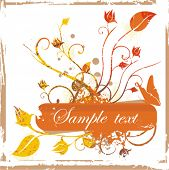 Floral vector frame series. Add your text inside.