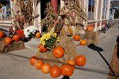 Harvest Decoration In Maine