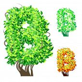 Vector illustration of an extra detailed tree alphabet symbols. Easy detachable crown. character b