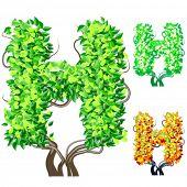 Vektor-Illustration eine zusätzliche detaillierte Baum Alphabet Symbole. Leicht abnehmbare Krone. Zeichen h