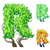Vector illustration of an extra detailed tree alphabet symbols. Easy detachable crown. character r