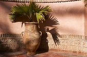 Garden Urn With Palm Leaves