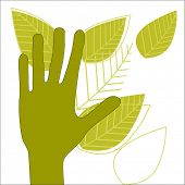 hand with leaves green