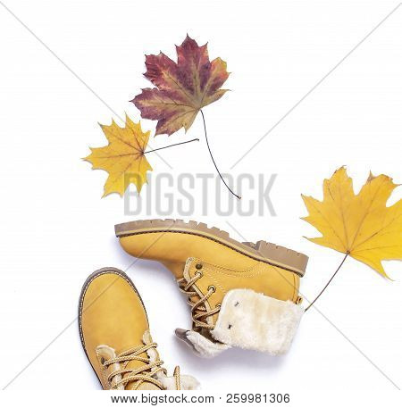 Female Orange Fashion Shoes Boots With Autumn Leaves On White Background  Top View Flat Lay  Fashion poster