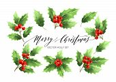 Christmas Holly Branches Realistic Illustrations Set. Green Holly Twigs With Red Berries. Merry Chri poster