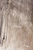 Old Wooden Plank Texture, Shabby Faded Weathered Surface Tree With Cracks And Scratches, Ancient Woo poster