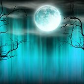 Spooky Halloween background with old trees silhouettes and shining moon. poster