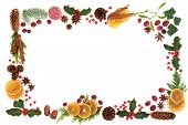Traditional Christmas and winter flora and food with loose berries forming an abstract background bo poster