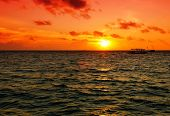 image of dhoni  - Beautiful vivid dramatic sunset over the sea in the Maldives with a traditional boat dhoni on the horizon - JPG