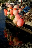 Commercial Fishing Gear For A Lobster Fishery