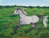 Acrylic painting of a gray horse cantering on a meadow/pasture
