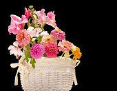 Flower basket against dark background