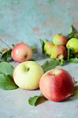 Fresh Apple Fruits Close Up, Juicy Red Apples With Green Leaves poster