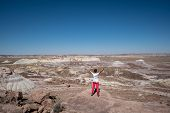 Female Traveler Stands On A Rock In Petrified Forest National Park In Arizona. Concept For Solo Fema poster
