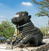 Nandi, Shiva?s vehicle, chamundi hill, built in 1659, Mysore, India