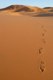image of barchan  - Human footsteps in the sand dunes of Erg Chebbi in the Sahara Desert - JPG