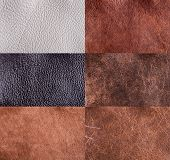 Collection Of Leather Textures