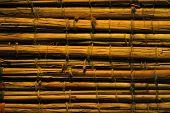 Bambus-Hintergrund