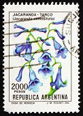 Postage stamp Argentina 1982 Blue Jacaranda, sub-tropical Tree