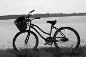 Bike Edited
