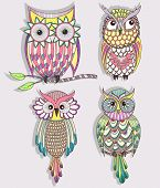 Set Of Cute Colorful Owls