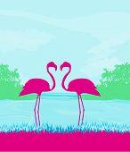 Flamingo Couple In Wild Nature Landscape