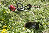 image of electric trimmer  - Electric trimmer lies on grass on a sunny day