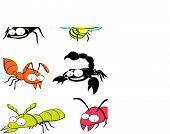 Plagas de insectos en casa