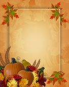 picture of fall leaves  - Image and Illustration composition for Autumn Fall Halloween Thanksgiving invitation border or background with copy space - JPG