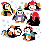 Set Of Cartoon Penguins