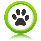 Paw of an animal icon