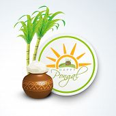 foto of pongal  - Happy Pongal - JPG
