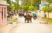 BEN TRE, VIETNAM-NOV 18, 2013:Main street with horse cart for tourist transportation on the Ben Tre island  on February 25, 2013 in Vietnam.