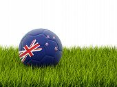 Football With Flag Of New Zealand
