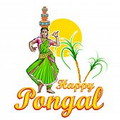 picture of pongal  - illustration of Happy Pongal greeting background - JPG