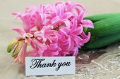 Thank you card with pink hyacinth