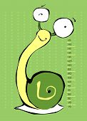 pic of measuring height  - Baby height measure  - JPG