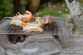 picture of babylon  - Spotted babylon and shrimps on grill cooking - JPG
