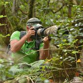 wildlife photographer outdoor in the woods