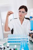 Female Researcher Holding Up A Test Tube