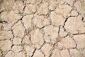 Cracked soil after drought
