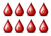 detailed illustration of drops of blood with blood groups, eps10 vector