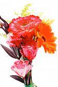 pic of tuberose  - red and orange gerbera  - JPG
