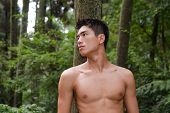 Image of handsome man standing over mountain forest,